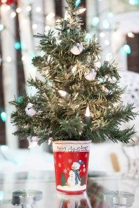 img_1377 e1412858582118 200x300jpg - Christmas Tree Shop Florida